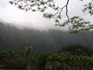 Beautiful Mountain Covered By Cloud (credit: WindermereSun-Susan Sun Nunamaker)