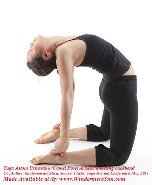 Yoga Asana Ustrasana (Camel Pose) A basic kneeling backbend, CC Author Lululemon Athletica