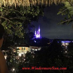 Viewing Cinderella Castle at night from Robinson Cruiso Tree house. Many people got the same idea: Beautiful sunny day to visit Magic Kingdom (credit: Windermere Sun-Susan Sun Nunamaker)