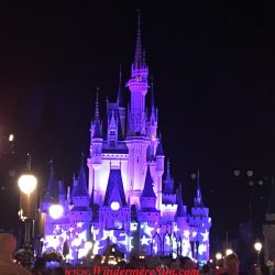 Purple Cinderella Castle of Magic Kingdom at night. Many people got the same idea: Beautiful sunny day to visit Magic Kingdom (credit: Windermere Sun-Susan Sun Nunamaker)