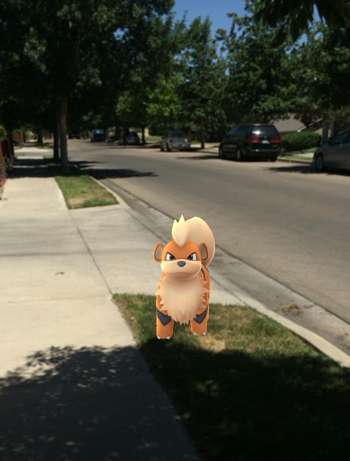 characters in new sensation: Pokemon Go (credit: Marina Nunamaker)