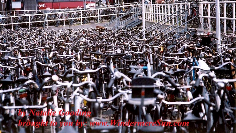 bike-dutch-bikes-by Natalie Gooding