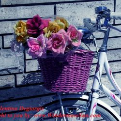 bike-false-roses- by Valentina Degiorgis