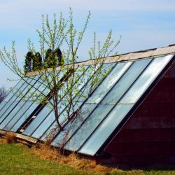Solar Growth by huntr004, brought to you by WindermereSun.com