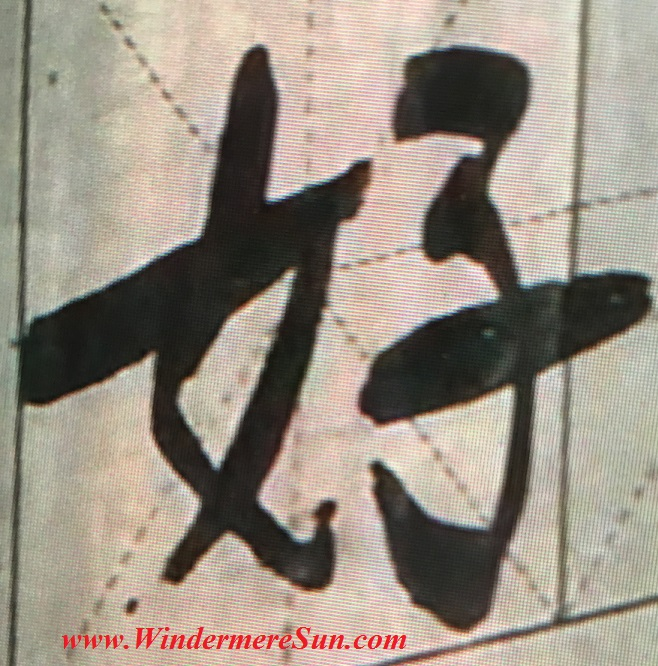 "Chinese character ""how"", meaning good, in multiple strokes (credit: Windermere Sun-Susan Sun Nunamaker)"