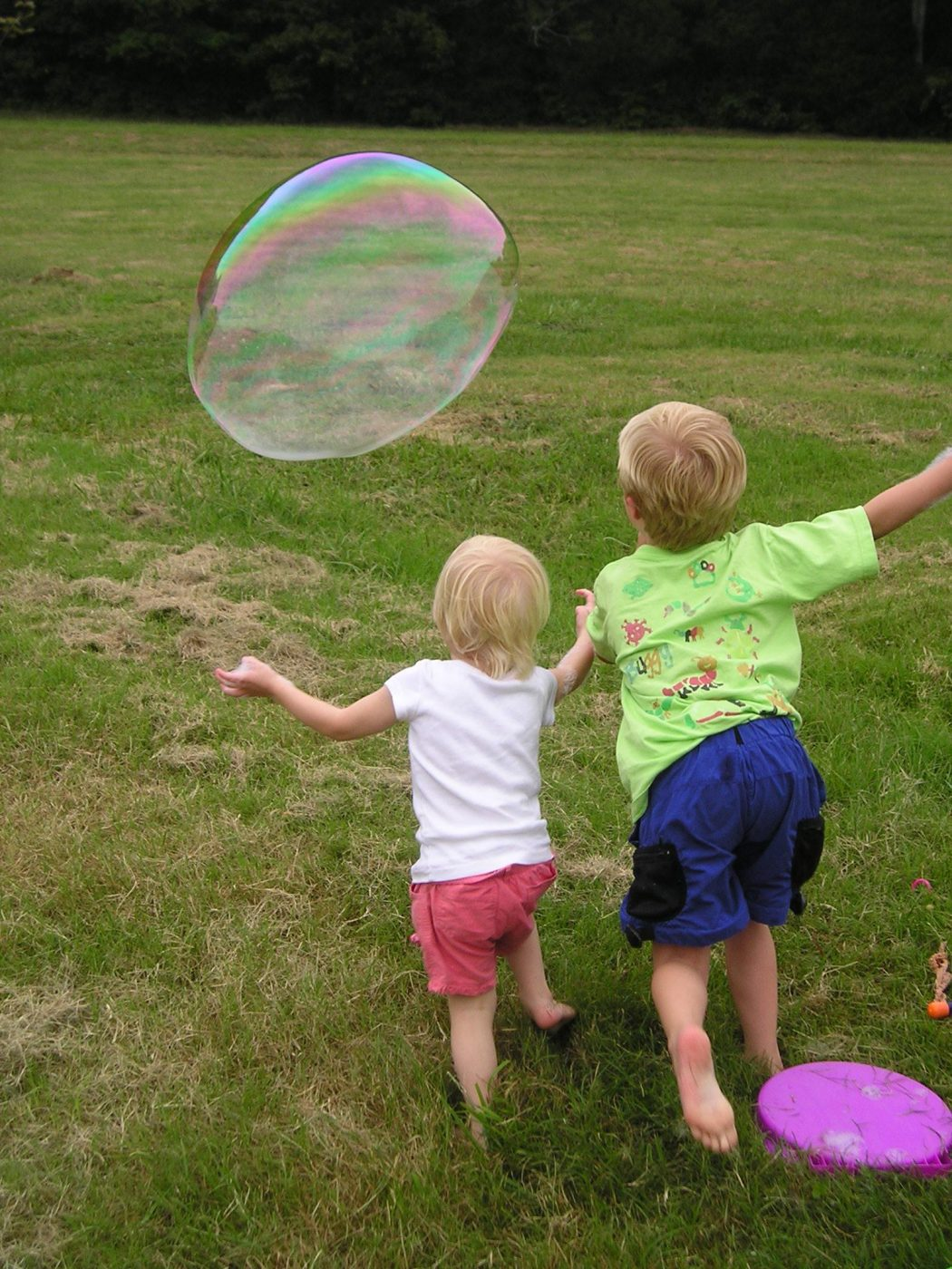 kids-chase-a-bubble-at-a-family-picnic, by Ned Horton