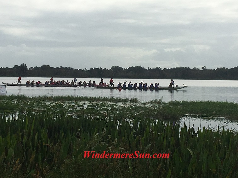 International Dragon Boat Race at Turkey Lake of Bill Frederick Park of Orlando on Oct. 15, 2016 (credit: Windermere Sun-Susan Sun Nunamaker)