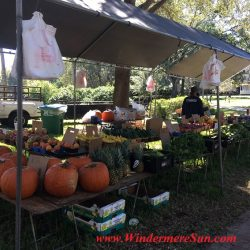 Produce with Pumpkins (credit: Windermere Sun-Susan Sun Nunamaker)