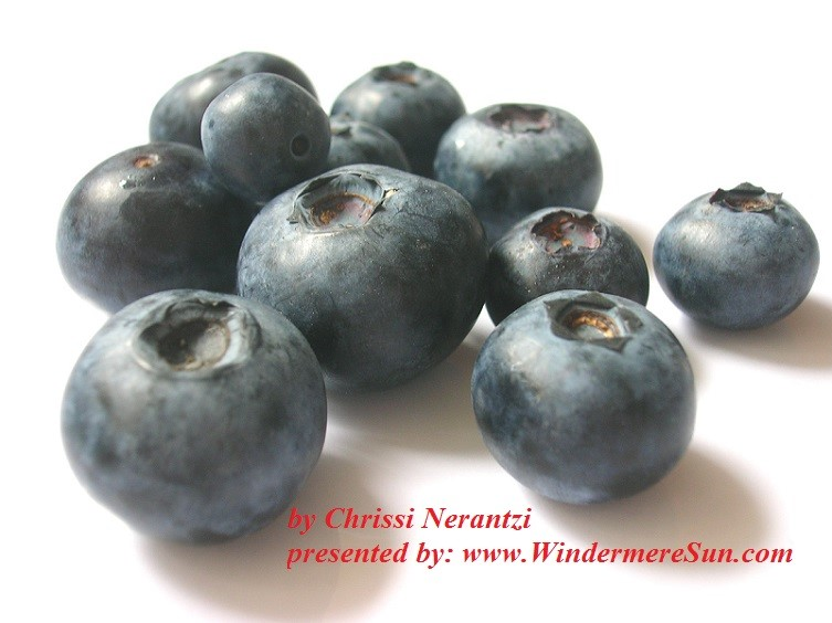 Brain Food-BLueberries (credit: Chrissi Nerantzi)