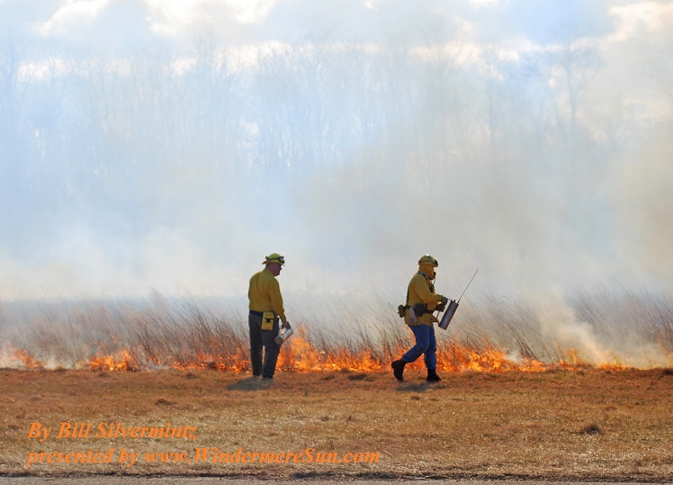 Controlled Burn (by Bill Silvermintz)