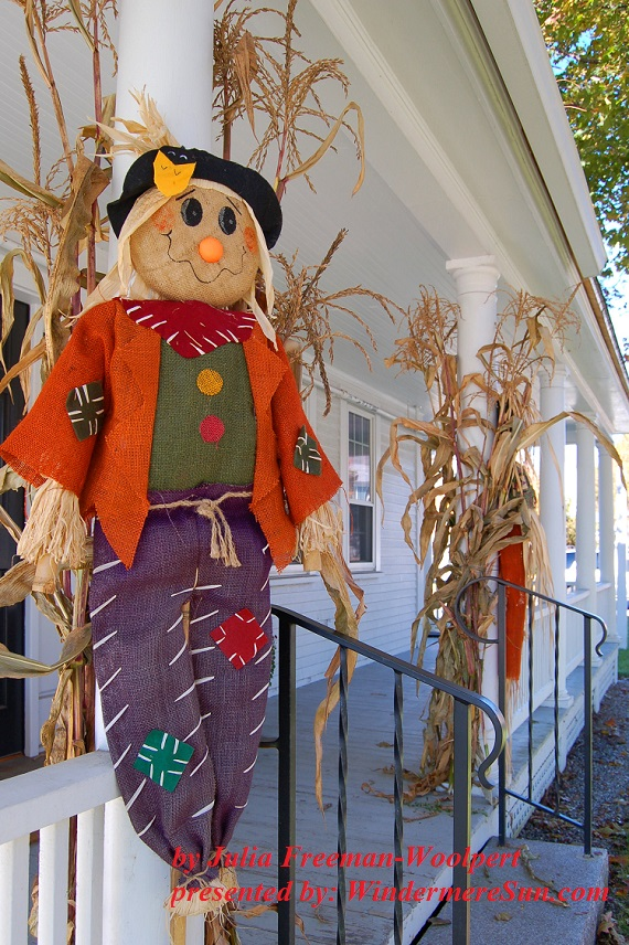 Scarecrow (credit: Julia Freeman-Woolpert)