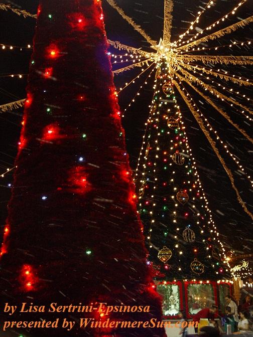 Christmas trees by Lisa Setrini-Epsinosa